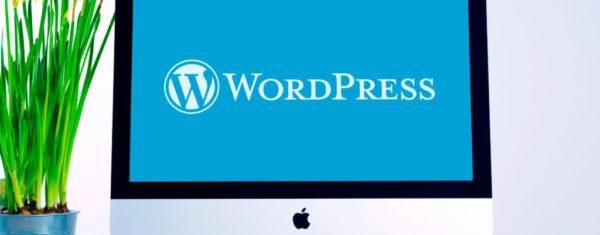 чтобы создать сайт на WordPress не нужно быть опытным программистом