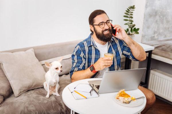 работа дома имеет массу преимуществ, но также стоит следить за домашними питомцами, которые могут нарушить рабочий процесс